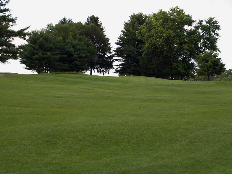 View of thirteenth hole toward the green from about 150 yrds. Click to enlarge