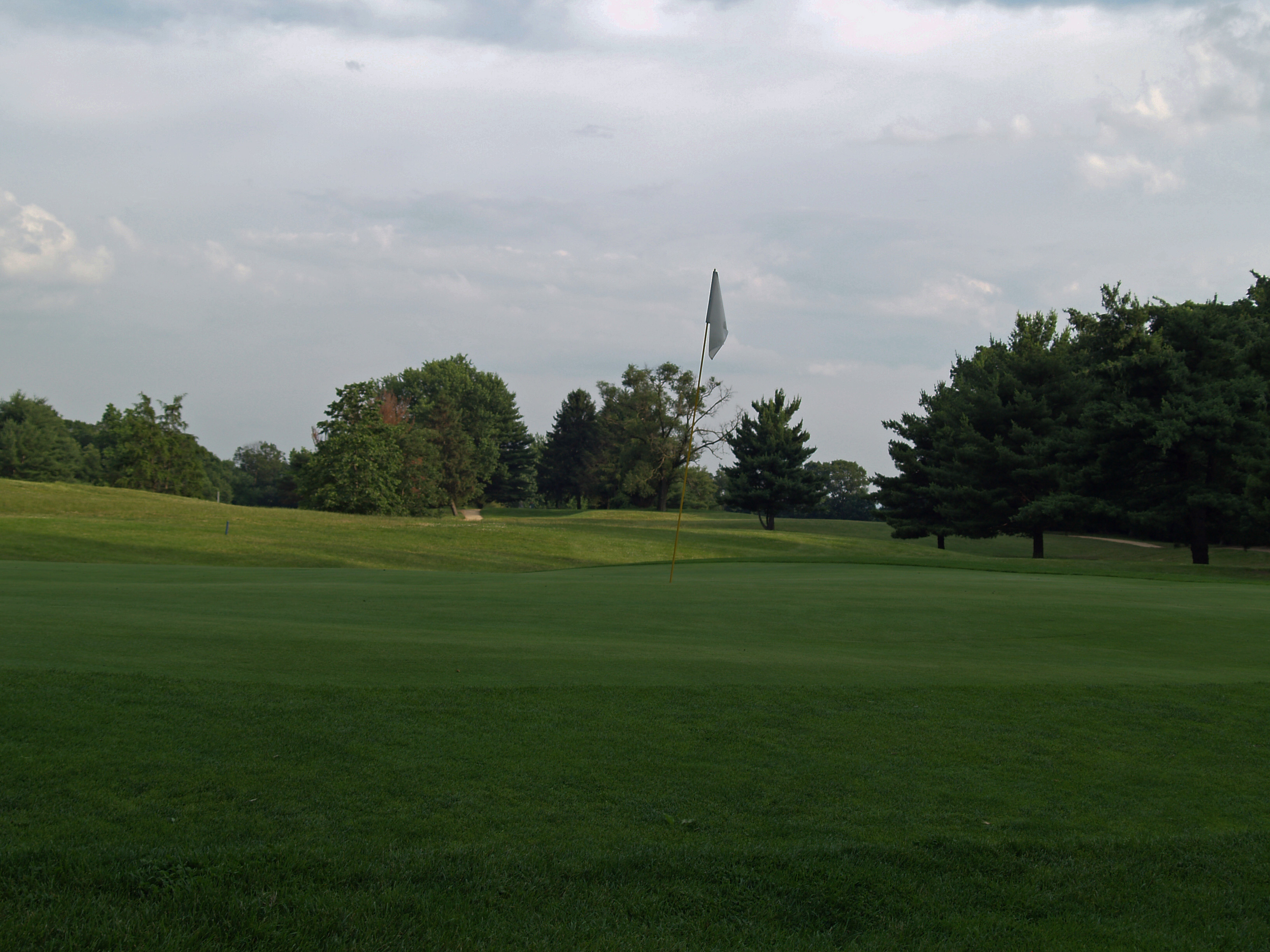 View of fourteenth hole from behind the green toward the tee. Click to enlarge