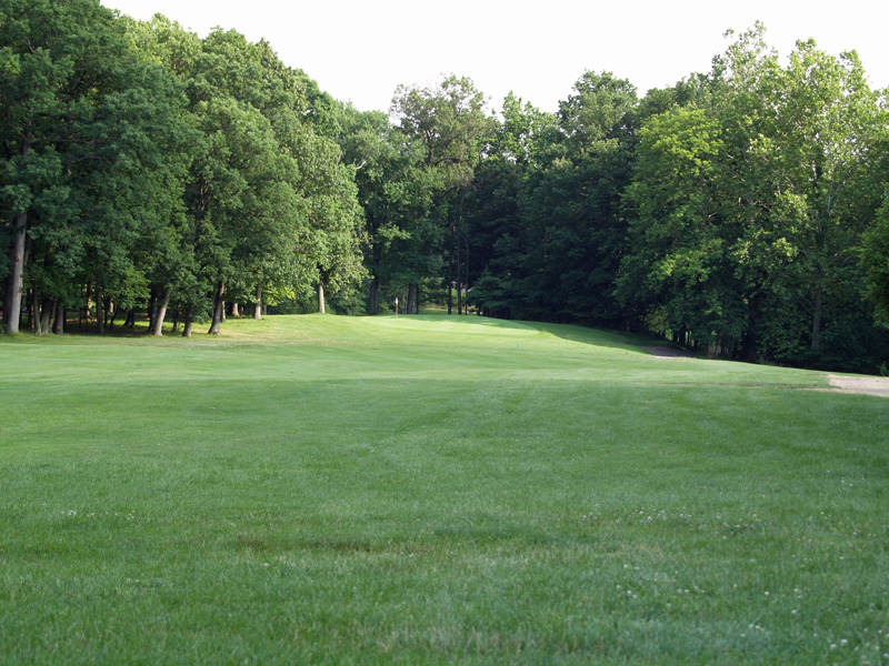 View of seventh hole toward the green from about 170 yrds. Click to enlarge